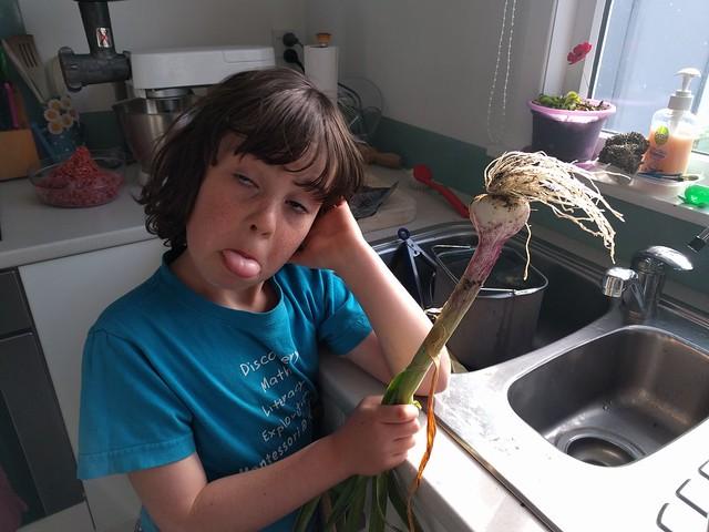 1 individual garlic