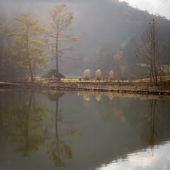 Steele Creek (crop2)