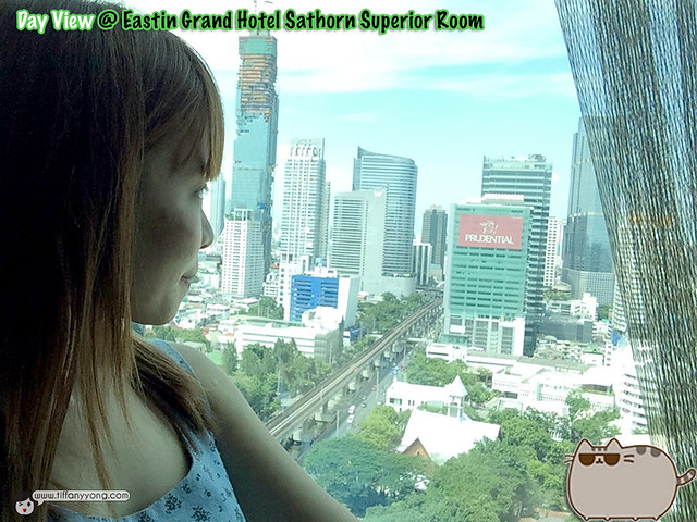 Eastin Grand Superior Room View