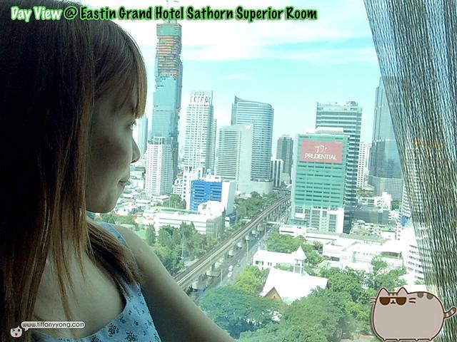 Eastin Grand Superior Room View