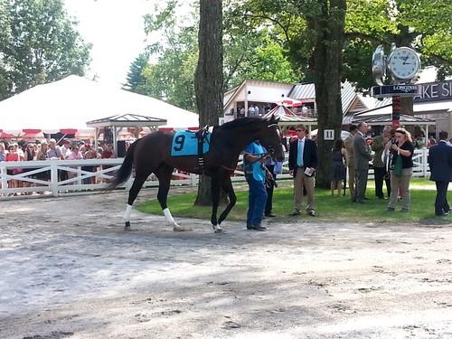 Saratoga Springs Race Track (14)