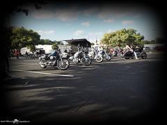 2015-11-28_PB281151_st.pete powersports Biker Bash_