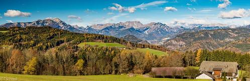 flowers panorama austria österreich orchids pflanzen blumen location berge landschaft wandern steiermark orchideen nigritella leoben
