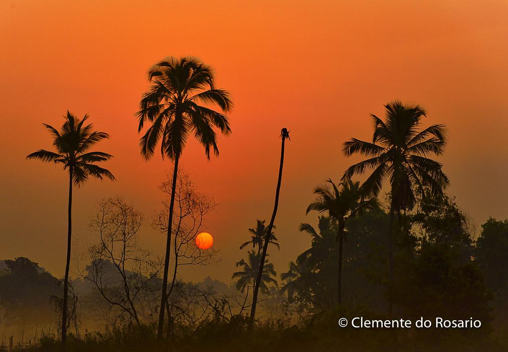 Orlim South Goa Tripcarta