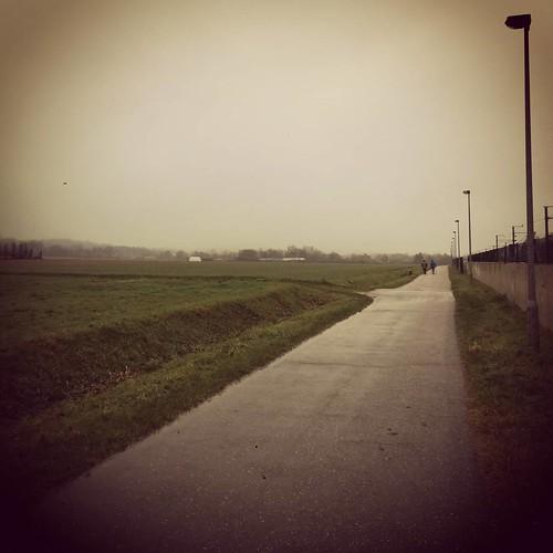 Ideaal loopweertje. 👌 #belgianwinter #miezer #running 🏃