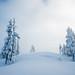 Ice Fog by Bryn Tassell