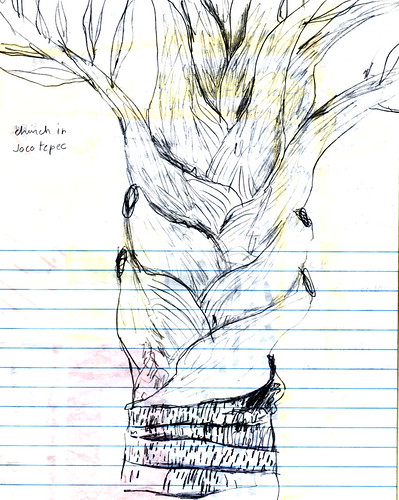 Sketch of a palm tree in Jocotepec, Mexico