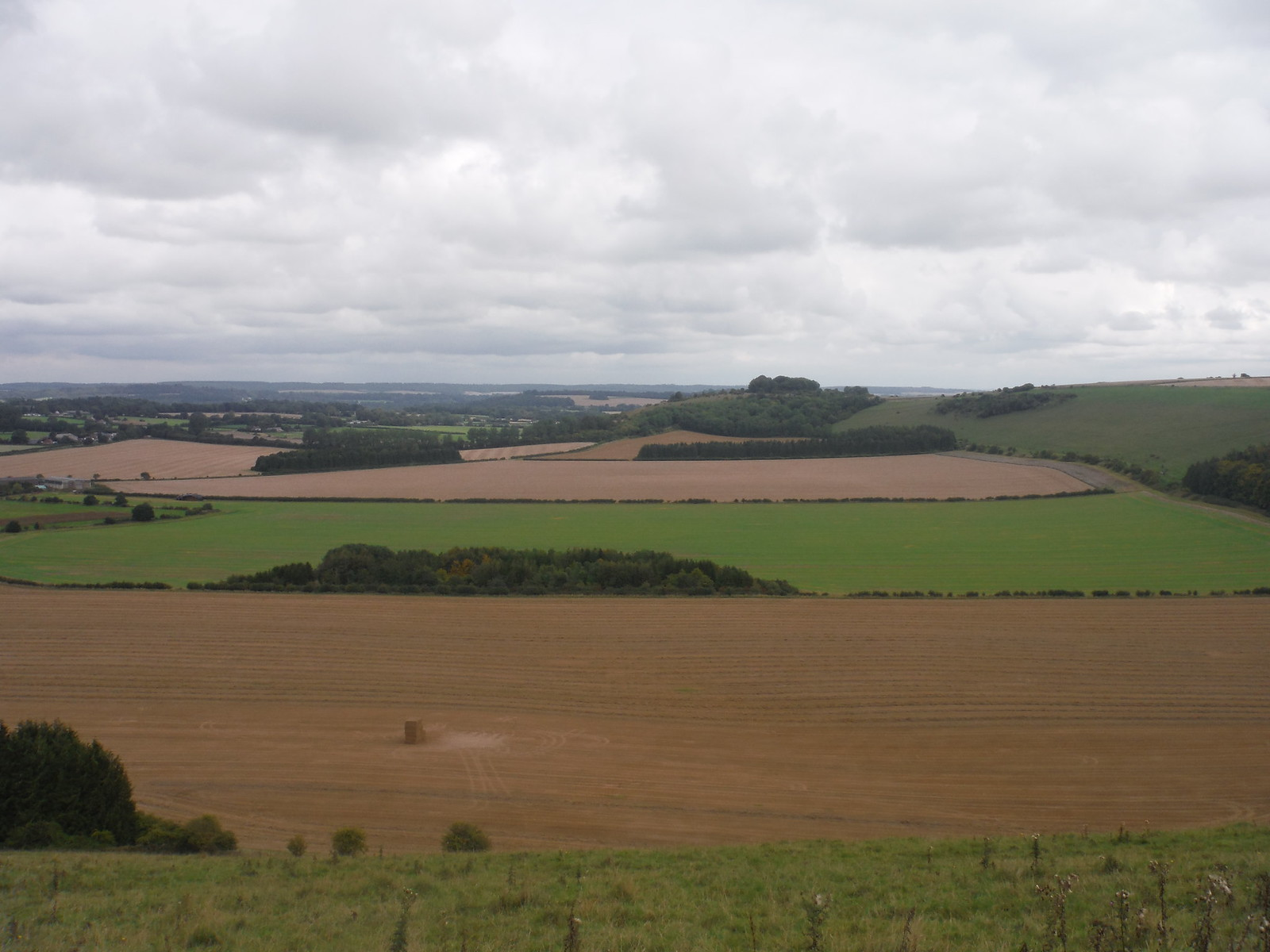 The Chalke Valley from Swallowcliffe Down SWC Walk 250 Tisbury Circular via Alvediston