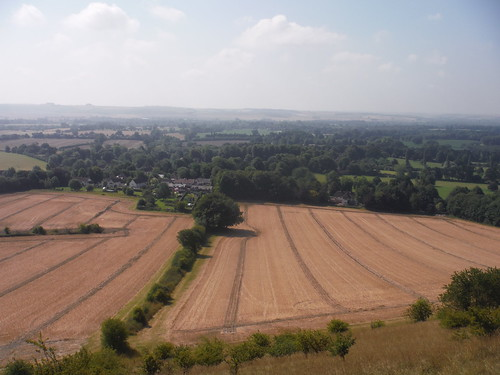 Vale of Pewsey from Huish Hill