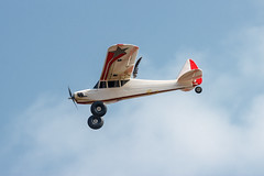 RC PLane with feather