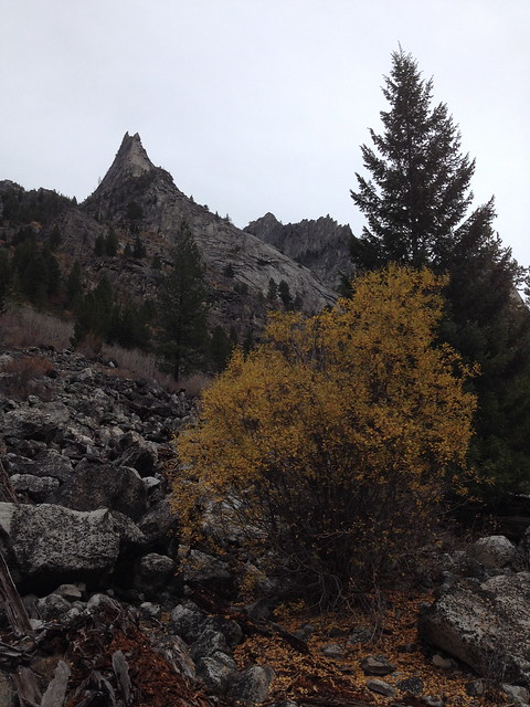 Crags and fall color