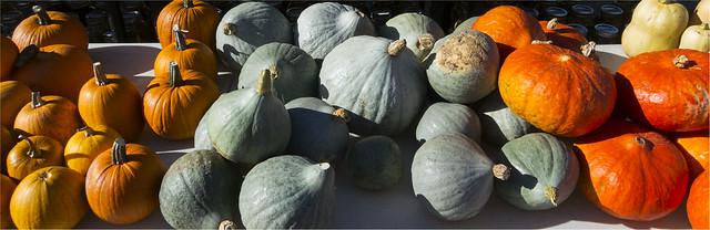 Autumn at the market