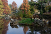 Autumn at the Dinosaur Court | Misty Crystal Palace-1 by Paul Dykes