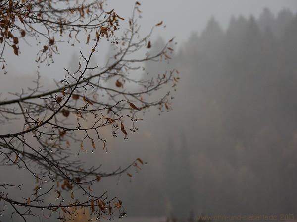 Novembergrau