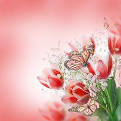 Red tulips with green grass  and  butterfly
