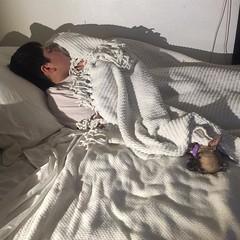 Yes, I do share my bed! And I worry all night! 129lbs. vs 5lbs. 😬 #lovemygrandson #lovemydog #manvsdog #ohbaby #dontsquishthebaby #lovemyboy #lovemydog #aj #sheera #princessofpower #family #love