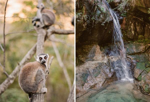 RYALE_Madagascar_Blog1_020