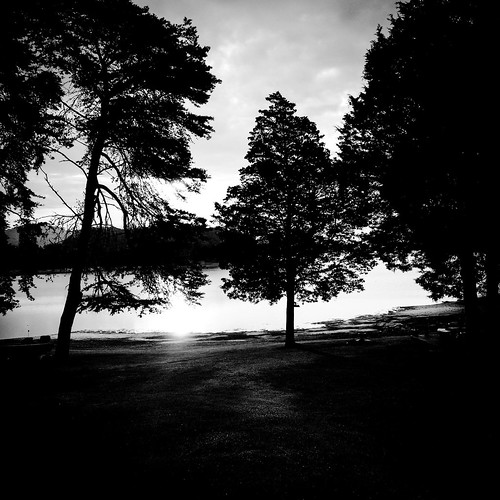 trees blackandwhite lake sunrise landscape serene