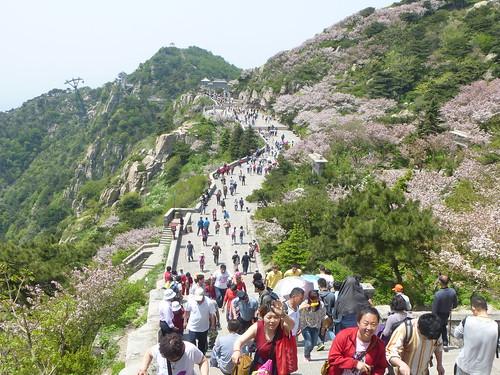 CH-Mont Taishan-Sommet 2-Bixia Temple (2)