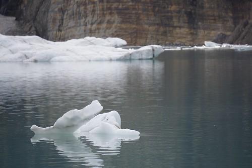 glacier ginnell icebergs