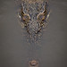 Singapore - Estuarine Crocodile by Floriantanplan
