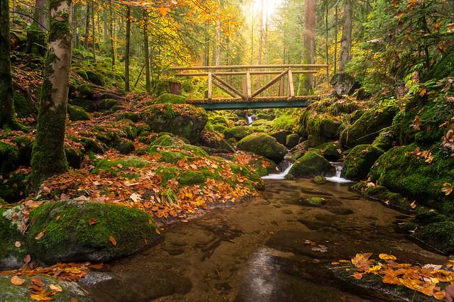 Gertelbach Cascade // Gertelbacher Wasserfälle