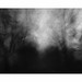 These Dark Days # 3 by bruXella & bruXellius