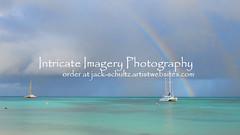 Aruba Rainbow  0441
