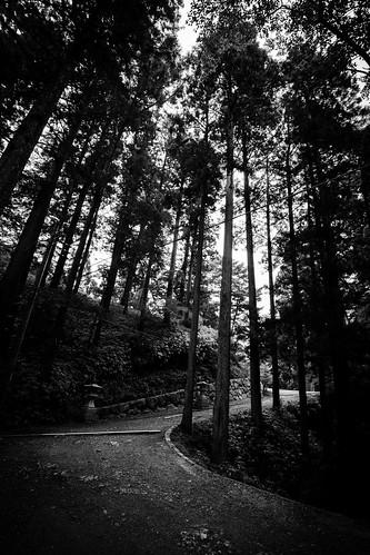 IMG_3076_LR__Kyoto_2015_09_04