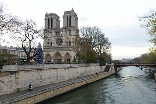 Image of Cathedral of Notre Dame de Paris near Paris.