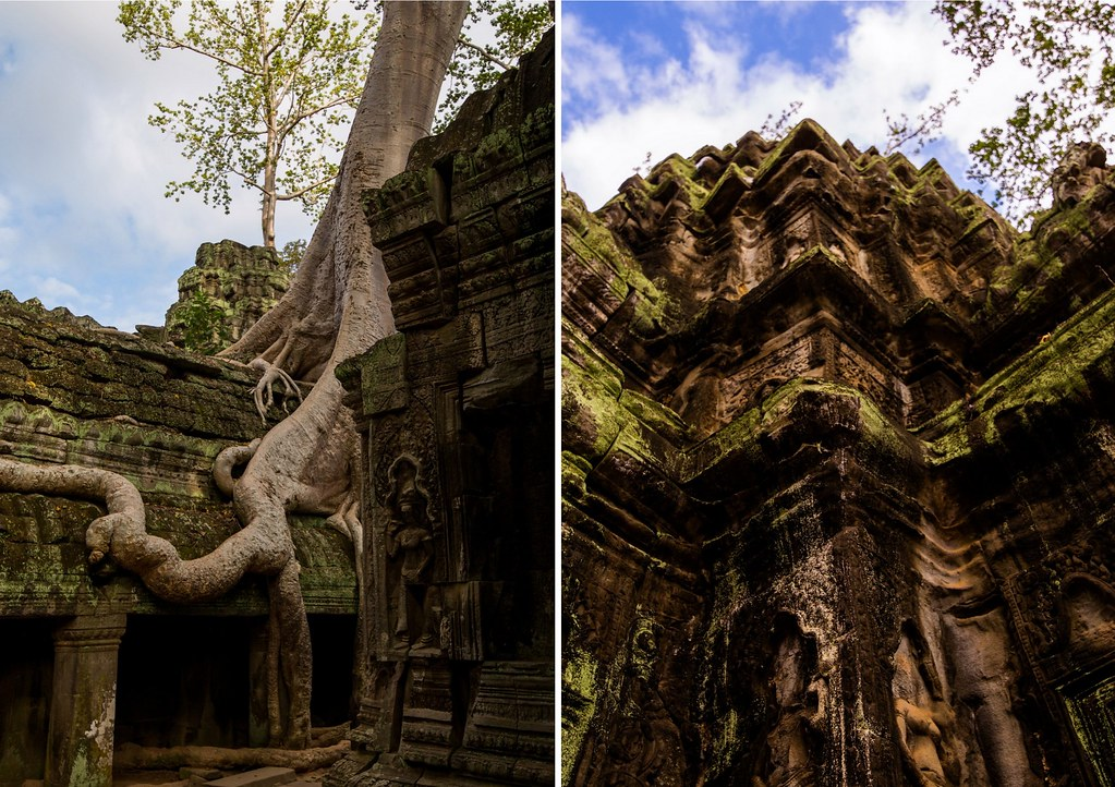 Angkor - Ta Prohm7