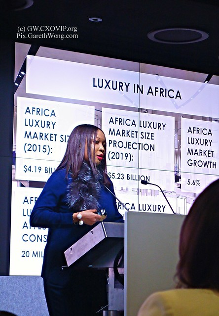 Uche Pezard CEO Luxe Corp on Africa Luxury Market size 2015 $4.19Bn projected to become $5.23Bn in 2019 at AfricaLuxuryForum from RAW _DSC4794