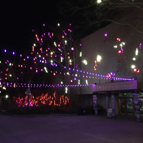 columbus zoo lights