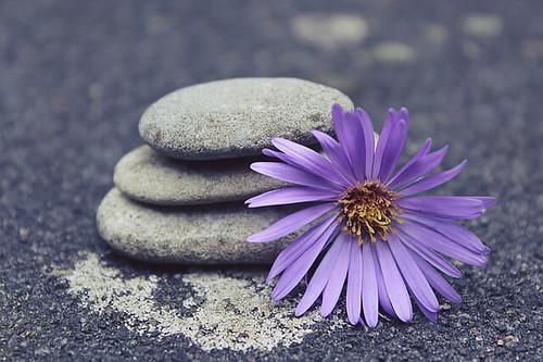 禅 by pixabay