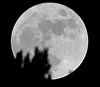 Full Beaver Moon - November 25, 2015
