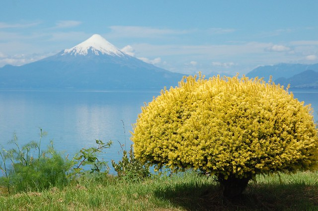Volcán Osorno, as seen over Lago Llanquihue, from Llanquihue, Chile