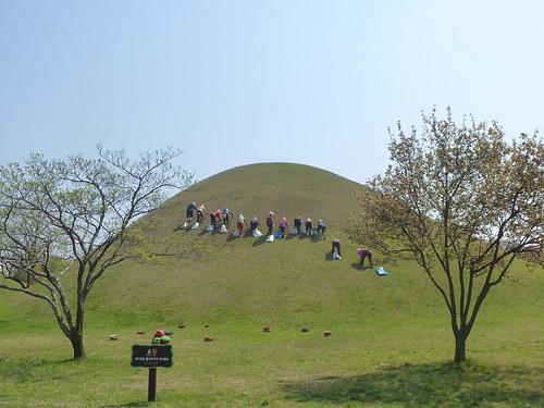 Co-Gyeongju-Parc des Tumuli (14)