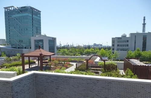 Co-Incheon-Parc Jayu (14)