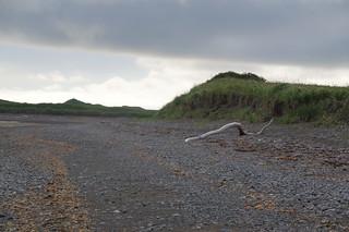 081 Strand bij Kamishak Bay