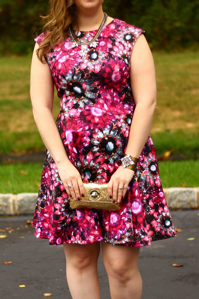 Ted Baker Jewel dress 1