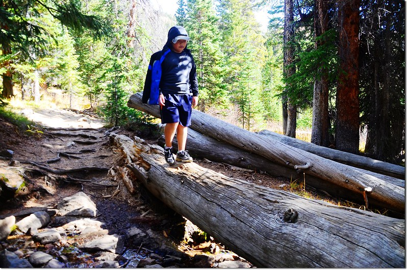 Herman Gulch Trail 4