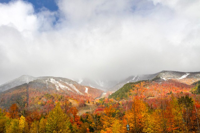 Whiteface October