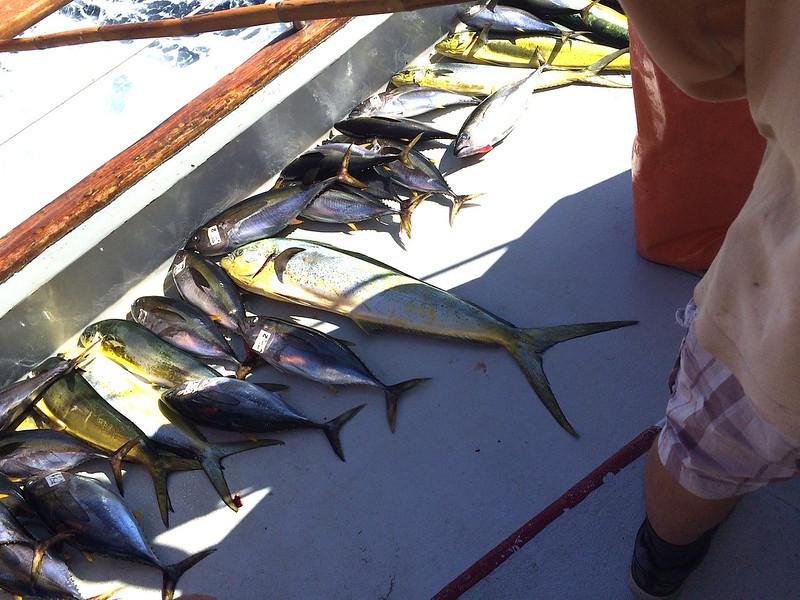 Fishing Wknd