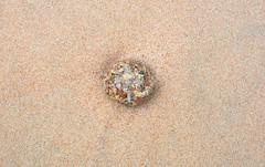Granite in the Sand