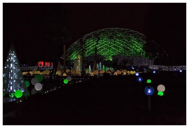 Garden Glow at MoBot 2015-11-20 13