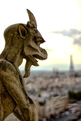 Paris from the Notre Dame