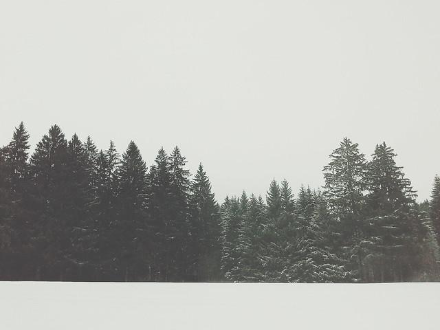 2015-12-01 05.49.42 1