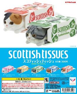 【官圖更新】唰!!!~~~~ 面紙盒中的摺耳貓 スコティッシュティッシュ