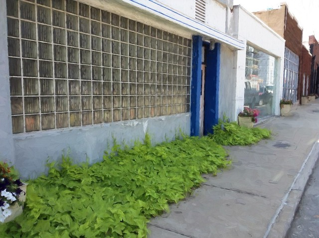 Downtown Sidewalk Greenery