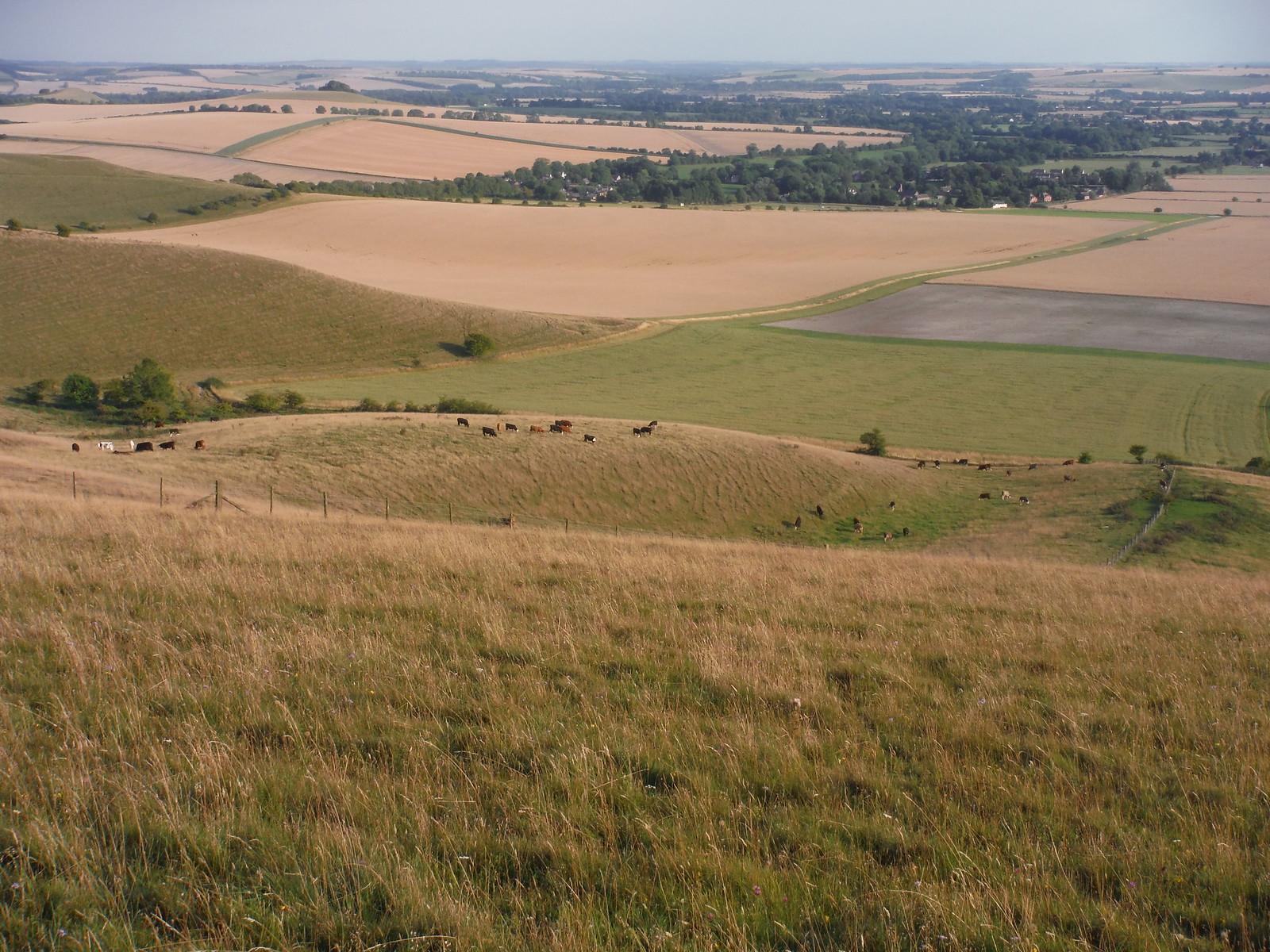 Vale of Pewsey from Walkers Hill SWC Walk 255 Pewsey or Marlborough Circular via Avebury